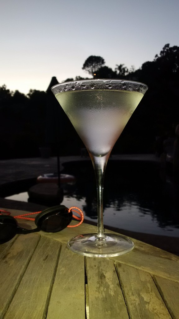 Summer Evening Martini
